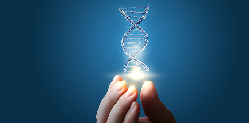 Hand holding an image of a DNA strand
