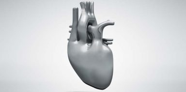 A grey graphic of a human heart.